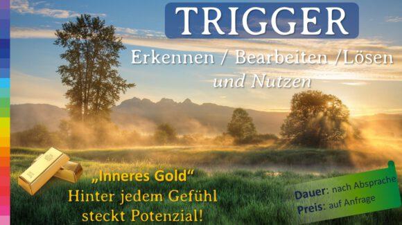 Trigger Coaching